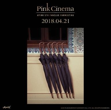 APINK韓国ファンミーティングチケット代行[PANDA 5TH FANMEETING]